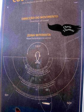 WW Regeln Pico 1